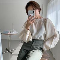 ♢予約販売♢レディードルマンブラウス/2color_lt0108