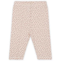 NEW BORN PANTS * TINY CLOVER ROSE 新生児パンツ