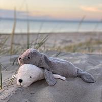 SENGER Naturwelt ・CUDDLY ANIMAL Seal・アザラシ / グレー(S)