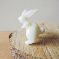 Petit lapin・うさぎボタン