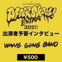 WANG GUNG BAND 「AFTER SKOOL! Extra 2020 出演者予習インタビュー」vol.2【動画データ】