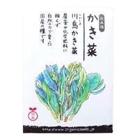【在来種の種】かき菜(川島かき菜) 約500粒 (63835) ※レターパックライト発送可能