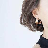 silver & gold  pierce