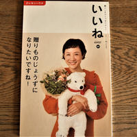 クレヨンハウス雑誌『いいね』vol.46