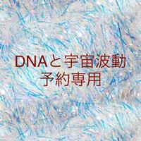 DNA修復と宇宙波動 セット