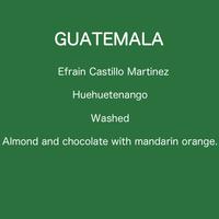 GUATEMALA Efrain Castillo Martinez - Washed / 100g