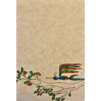 ポストカード 鳥と木の実