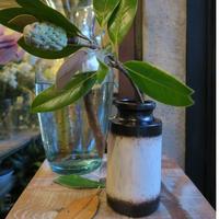 Antique flower vase  / GER-004