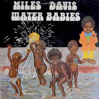 Miles Davis / Water Babies  (USED LP)