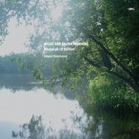 とくさしけんご『MUSIC FOR SAUNA MORNING』レコード