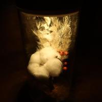 ガラス瓶の光る植物標本(直径8cm×高さ17.5㎝) コットンフラワーと野バラの実の花束