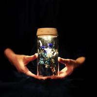 ガラス瓶の光る植物標本(直径8cm×高さ17.5㎝) 青薔薇の花束