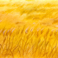 5/18ホロスコープアート:あなただけの〇〇をつかみなさい