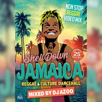 Shell Down Jamaica vol.6 -Reggae & Culture Dancehall- Mixed by DJ AZOO