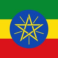 エチオピアウォッシュド 浅煎り200g