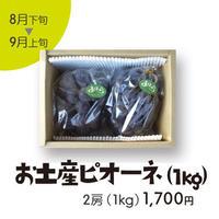 [103]お土産ピオーネ1kg