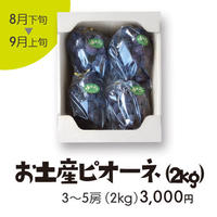 [102]お土産ピオーネ2kg