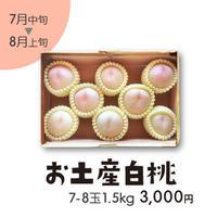 [308]お土産白桃 7-8玉 1.5㎏