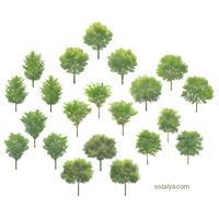 樹木イラスト 4e_001