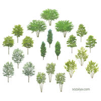 樹木イラスト 4e_003