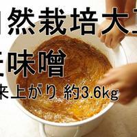 手作り味噌キット 自然栽培大豆の麦味噌(出来上がり量3.6kg)