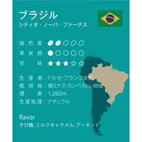 ブラジル 中煎り ミディアムロースト 250g