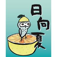 夏のぶれんど 【 日向夏 】浅煎り シナモンロースト 500g