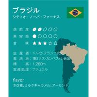 ブラジル 中煎り ミディアムロースト 500g