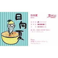 夏のぶれんど 【 日向夏 】浅煎り シナモンロースト 250g