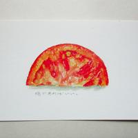 ポストカード トマト