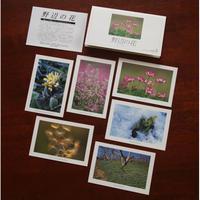 ポストカード【SeasonSelection vol.5 野辺の花】