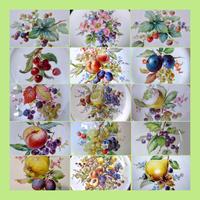 (再販限定15)マイセン様式 アンティークフルーツ16種33枚