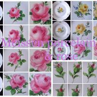 (再販)マイセンの薔薇写真集22枚セット(限定5)