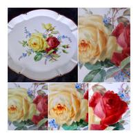 マイセンアンティーク 薔薇写真5枚セット