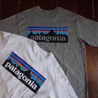 Patagonia   P-6 Logo Pocket Responsibili-Tee