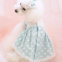 【 AngelicMoon Chambre】Lovely Cloudy Girls (ラブリークラウディガールズ) Mサイズ