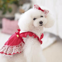 """""""在庫限り終了"""" Mサイズ【Alice in Wonderland】 Raspberry Sweet(ラズベリースゥイート)"""