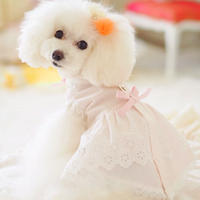 【 Picnic of Marie Antoinette】Trianon Princess(トリアノンプリンセス)サイズM/L