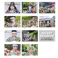 BROMIDE(ブロマイド)