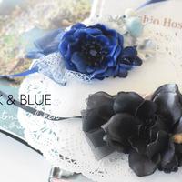 【限定】BLACK or BLUE ?