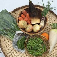 【定期おトク便:大家族・月3回】無農薬 野菜セット  (税、送料、夏季クール便代込み)