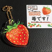 苺のキーホルダー 金のボールチェーン