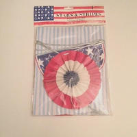 Stars and Stripes patriotic(45-0582)