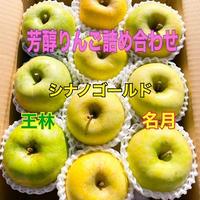 りんご 芳醇りんご詰め合わせ(送料込み)3キロ(9個から12個入り)