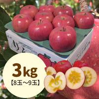【送料込】贈答用特選!蜜入りサンふじ3kg(8玉〜9玉)