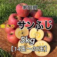 【送料込】家庭用蜜入りサンふじ5kg(14玉〜20玉)