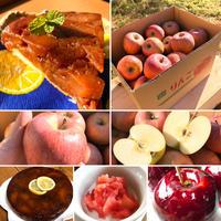 蜜なし お菓子作りや毎日のスムージーなどに 蜜なしサンふじ 10キロ 送料込み(一部地域を除く)