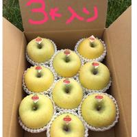 シナノゴールド りんご3キロ(9〜12個入り)送料込み(一部地域を除く)