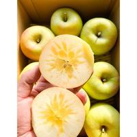 ぐんま名月リンゴバラ詰 2キロ箱入り 8から12個入り