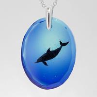ハンドウイルカ(dolphin417)